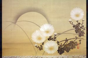 Image of Chrysanthemums and Sun